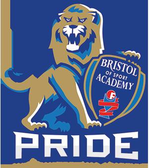 lion-w-shield-logotype